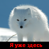 Особенности псковской журналистики - последнее сообщение от Алхимик