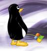 Windows vs Linux - последнее сообщение от Закат 80